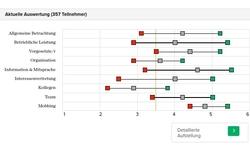 Auswertung: Betriebsklimaanalyse
