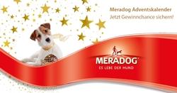 Viel Glück beim vergnüglichen Entspannen mit dem Online-Adventskalender für Hundefans
