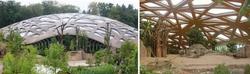 Auch im Elefantenhaus des Züricher Zoos kommen esb-Holzwerkstoffplatten von elka zum Einsatz. Foto: Züricher Zoo